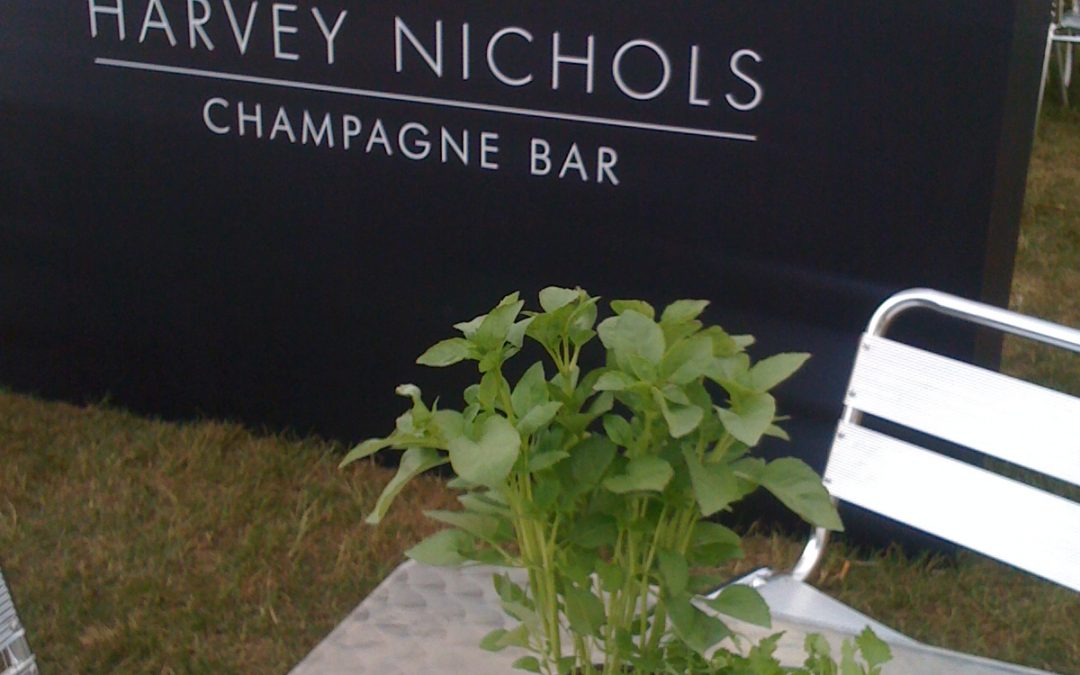 Installation & Set Up of Harvey Nichols Stand at the Hampton Court Foodies Event
